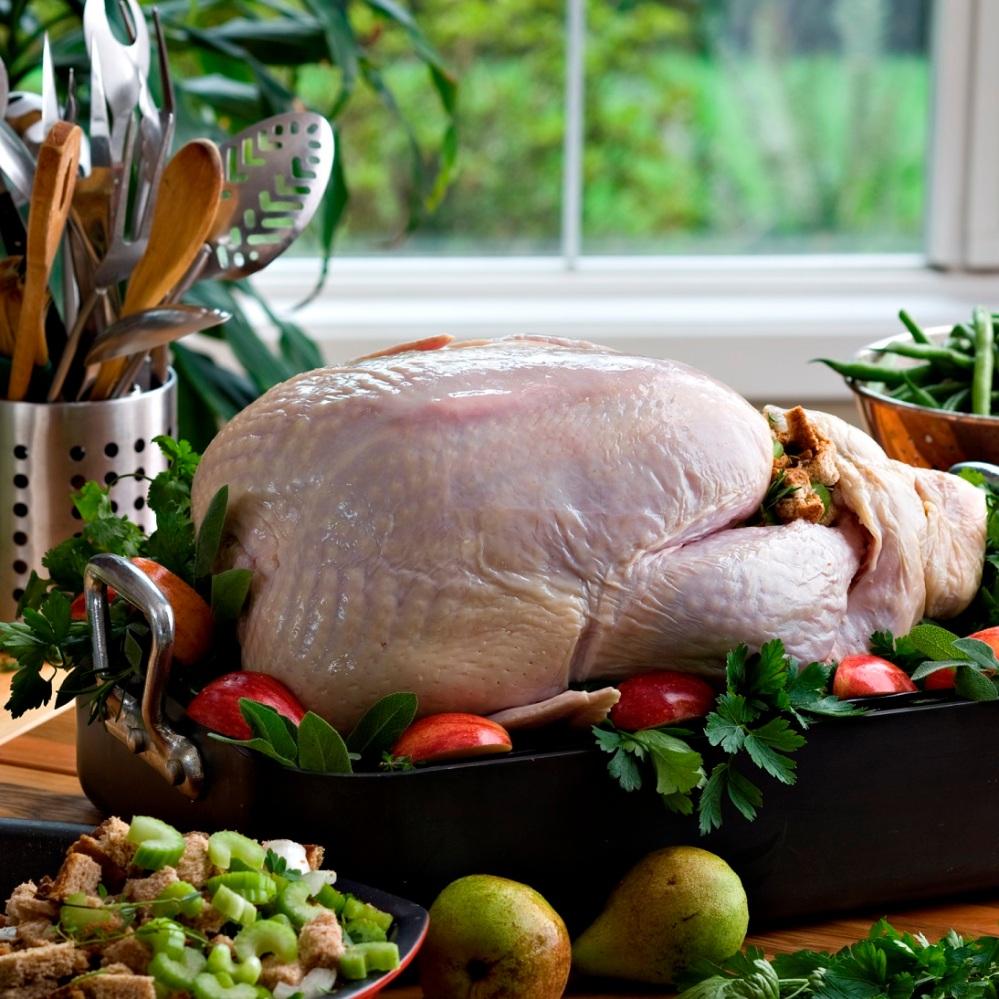 raw_turkey_9539