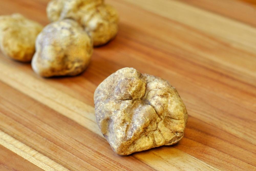 white truffle 1.jpg