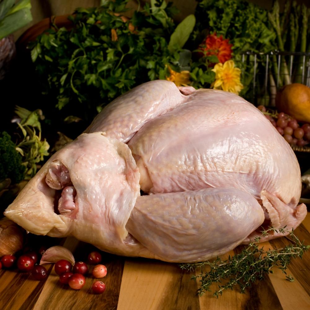 ftuhe040-1_va0_heritage-turkey