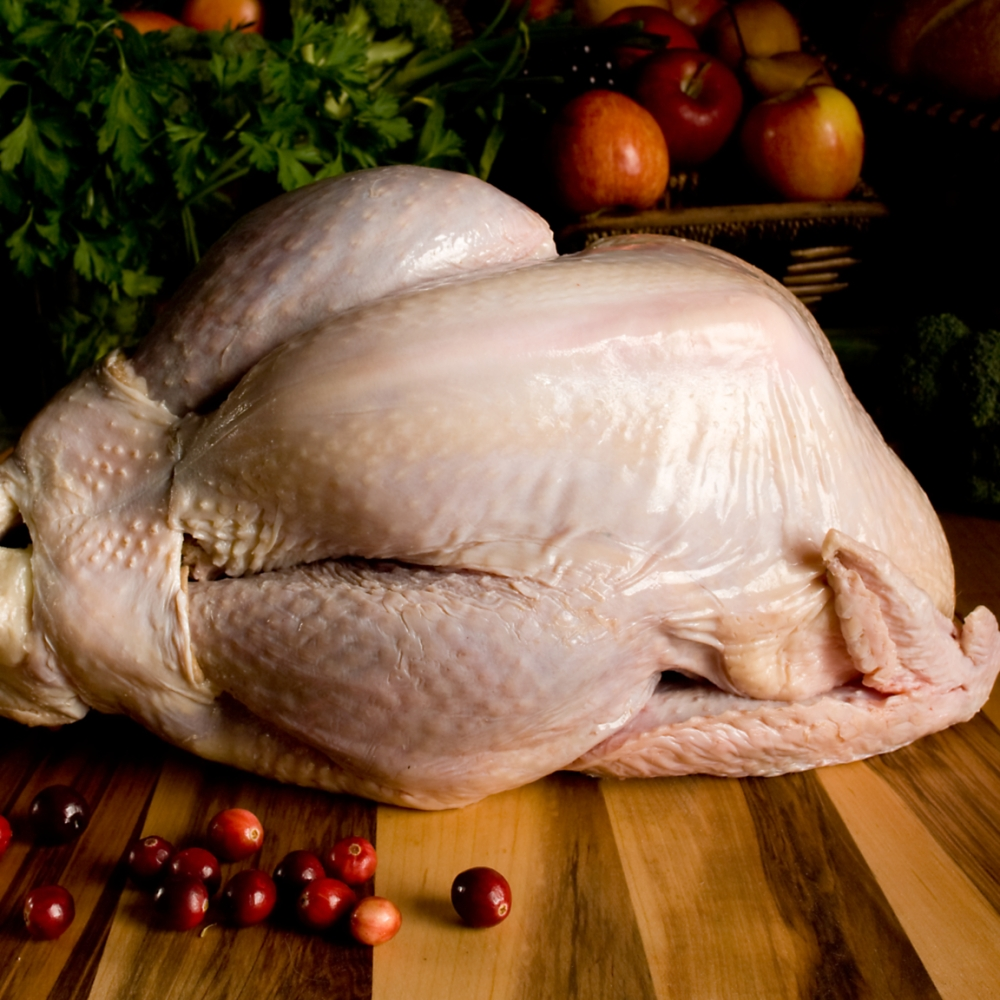 ftuor002-1_va0_organic-turkey
