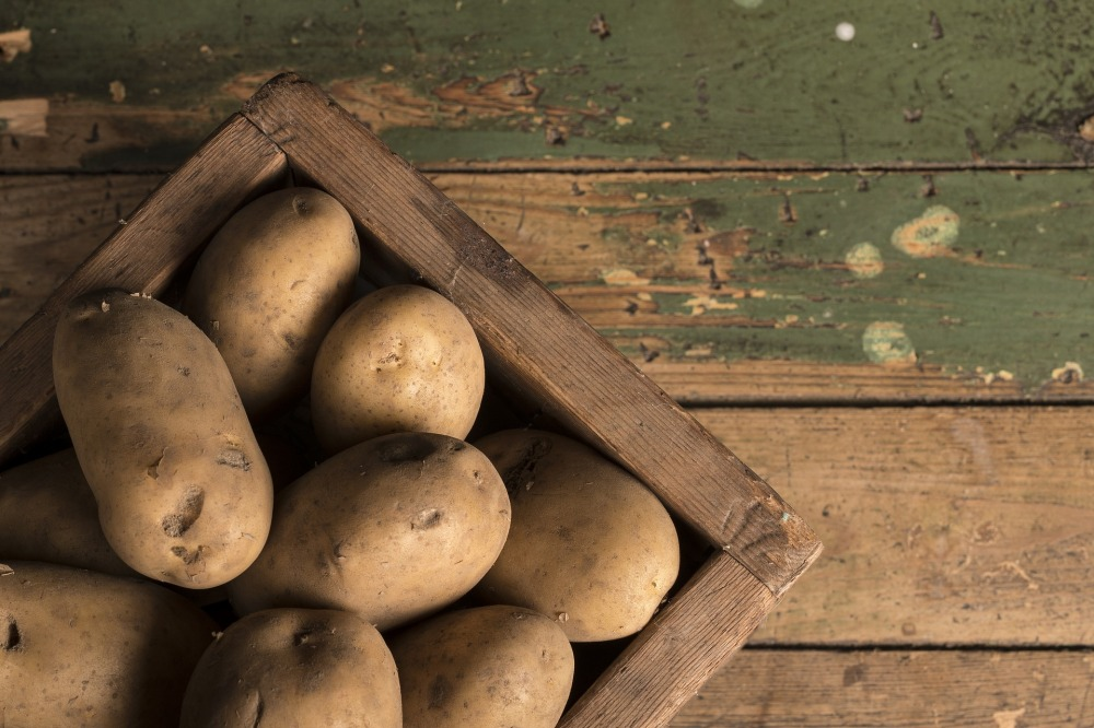 potato-2277455_1920.jpg